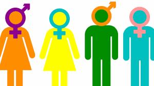 Comissió de gèneres