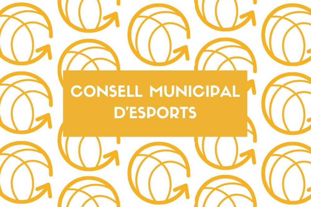 Consell Municipal d'Esports