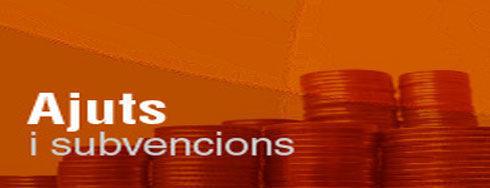 CONVOCATÒRIES  2019 per l'atorgament de Subvencions a entitats i associacions locals, per activitats esportives, socioculturals i als barris, 2019