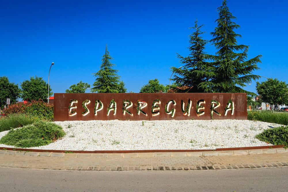 Diagnosi del Pla Local de Seguretat d'Esparreguera