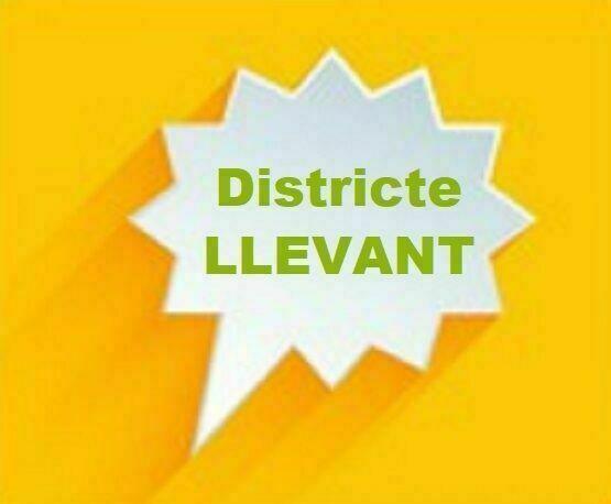 CONSELL DE DISTRICTE LLEVANT